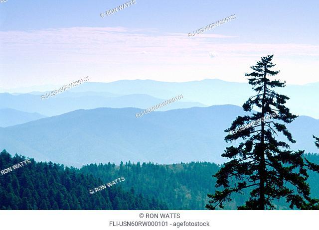 R.Watts, North Carolina, Tennessee Great Smoky Mountains, Vista From Clingman's Door