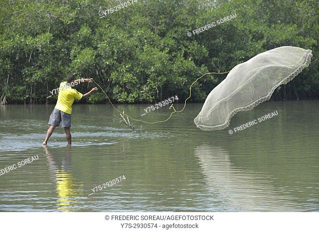 people fishing with net near Cartagena, Colombia, South America