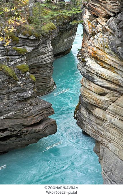 The bottom cascade of a falls