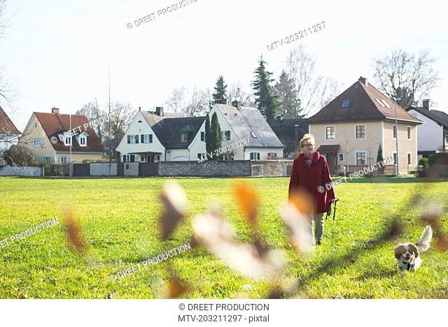 Old woman walking on meadow with pet dog