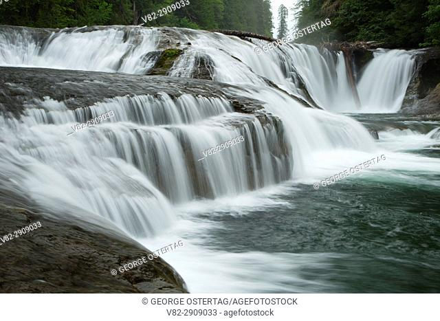 Middle Falls along the Lewis River Trail, Gifford Pinchot National Forest, Washington
