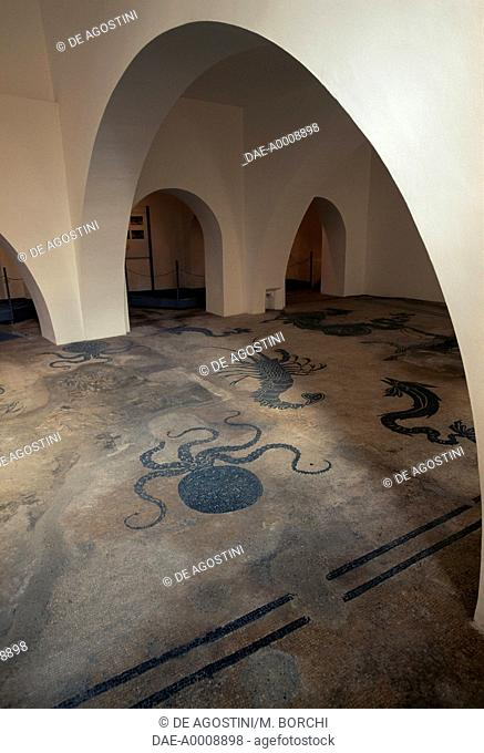 Octopuses, dolphins and lobsters, mosaic floor in the Roman Baths of Bevagna, Umbria, Italy, Roman civilization, 2nd century
