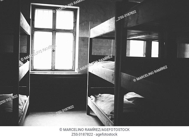 Auschwitz Nazi concentration and extermination camp. Bunk beds in barracks. Auschwitz, German-occupied, Poland, Europe