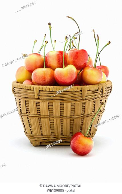 Rainier cherries sitting in a basket isolated on a white background
