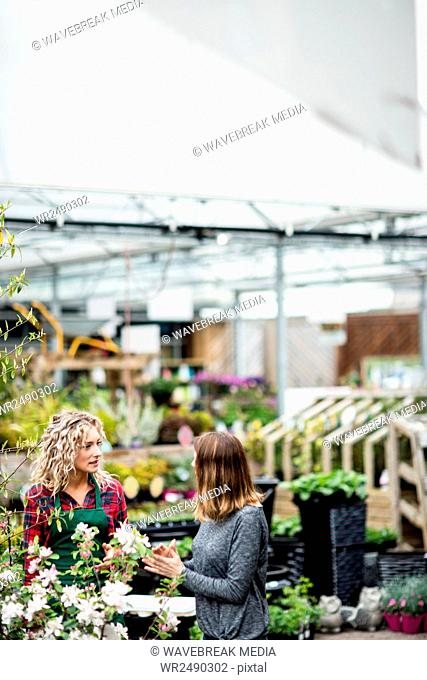 Florist talking to woman in garden centre