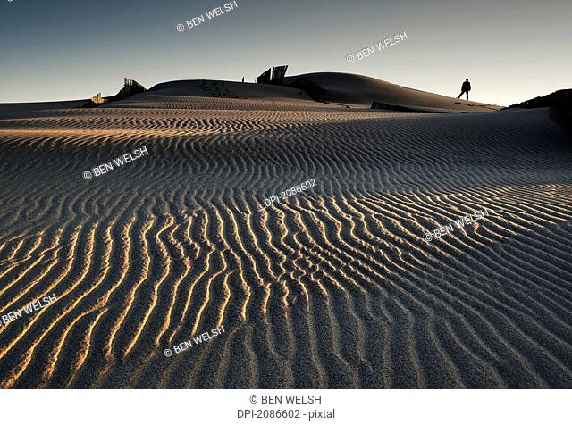 Silhouette of a person standing on a sand dune with rippled sand in the foreground, tarifa cadiz andalusia spain