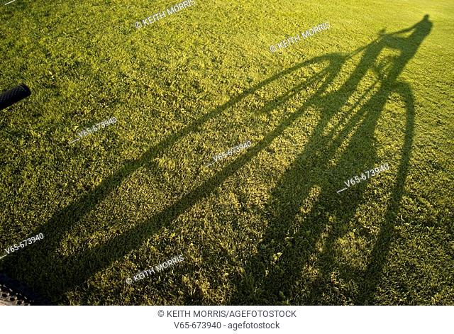 Shadow of bicycle on green grass lawn