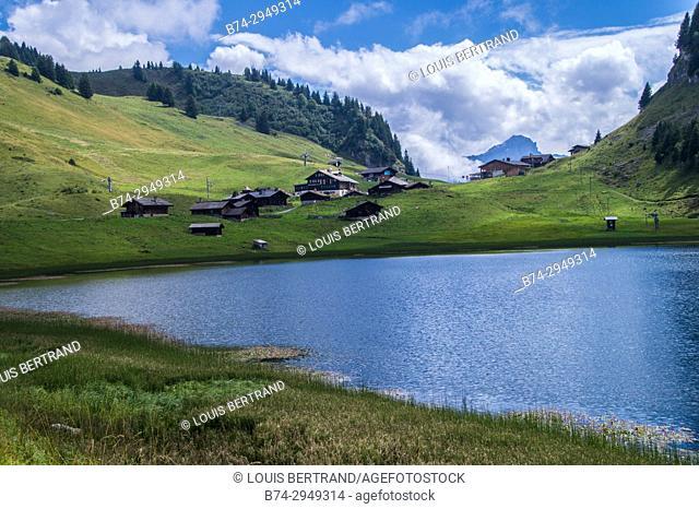 lake bretaye, vaud, swiss