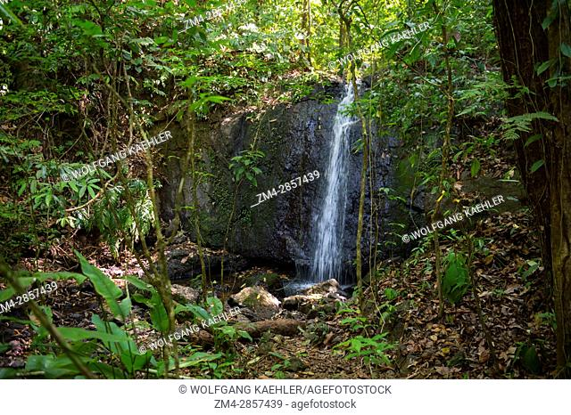 View of a waterfall in the rainforest near the Campanario Biological Station which lies in the Pacific lowland tropical rain forest of the Osa Peninsula in...