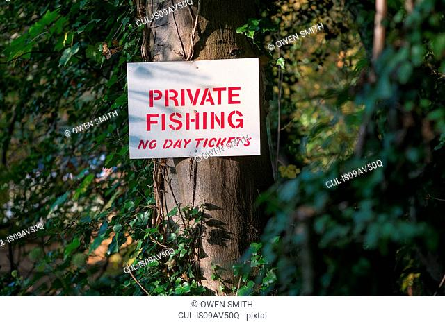 Private fishing notice on woodland tree