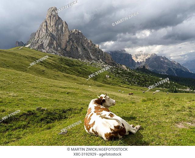 Dolomites at Passo Giau. Ra Gusela and Tofane. The Dolomites are part of the UNESCO world heritage. Europe, Central Europe, Italy