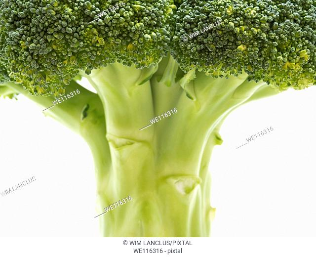 Broccoli closeup isolated on white background