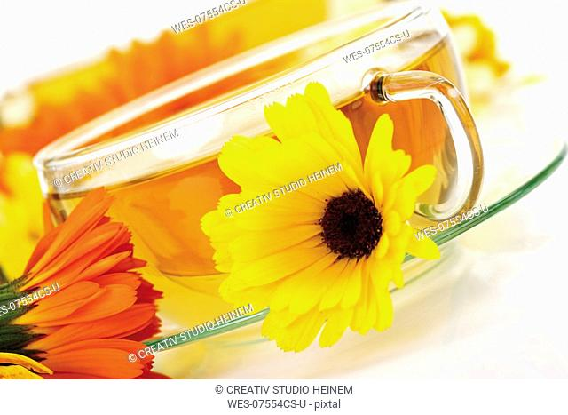 Marigold tea and fresh flowers, close-up