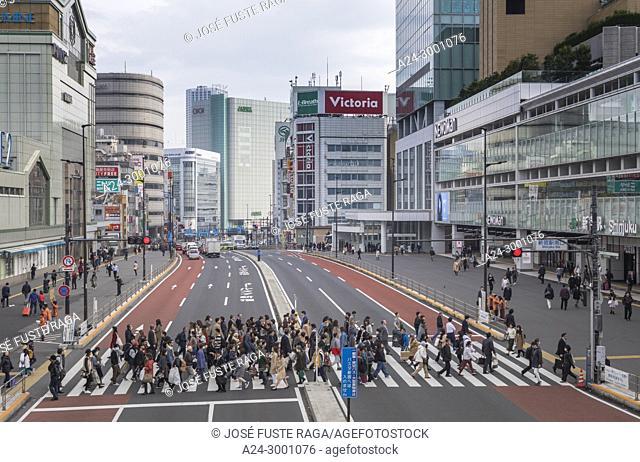 Japan , Tokyo City, Shinjuku District, South Shinjuku Station , Koshukaido Avenue