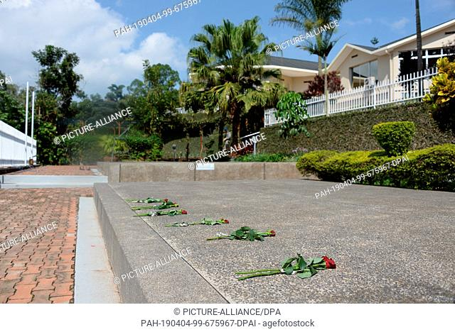 31 March 2019, Rwanda, Kigali: Roses lie on the ground in the genocide memorial. Around 250,000 victims of the 1994 genocide are buried here