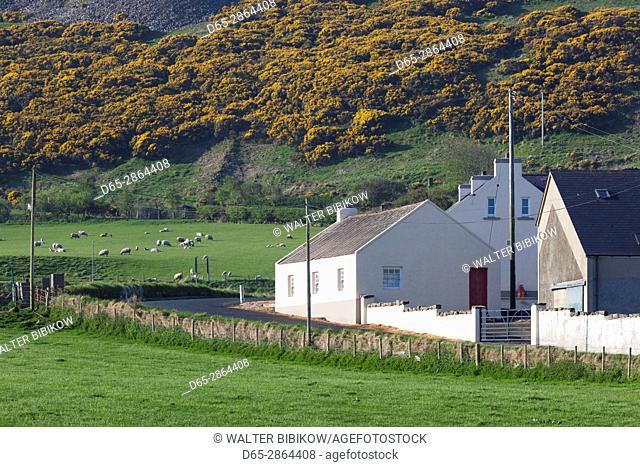 UK, Northern Ireland, County Antrim, Ballintoy, village house