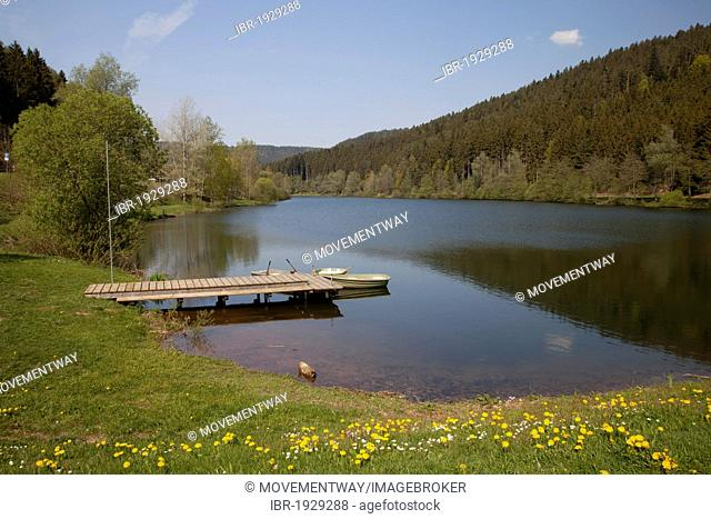 Landing stage on the Nagoldtalsperre dam, Nagoldtal valley, Black Forest mountain range, Baden-Wuerttemberg, Germany, Europe