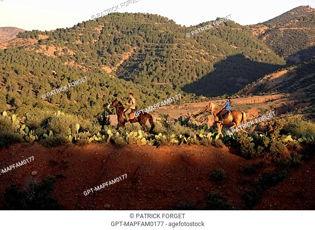 HORSEBACK RIDING IN THE COUNTRYSIDE, ONE OF THE SPORTS ACTIVITIES AT THE DOMAINE DE TERRES D'AMANAR, TAHANAOUTE, AL HAOUZ, MOROCCO