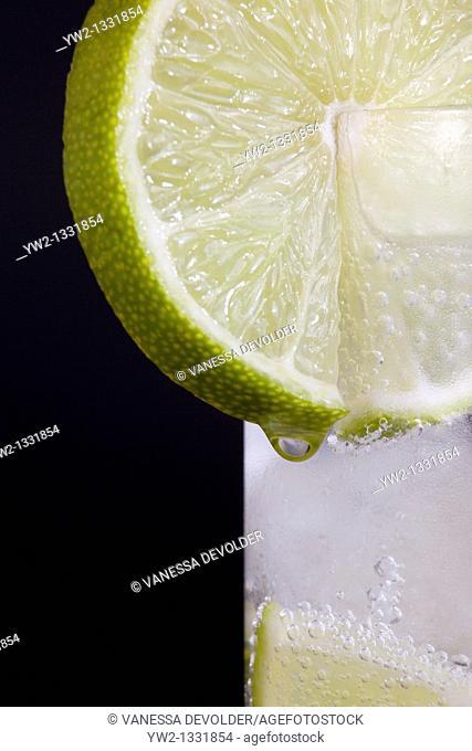 Lime slice on a glas  Studio photograph, black background  V10BEL0507-RM