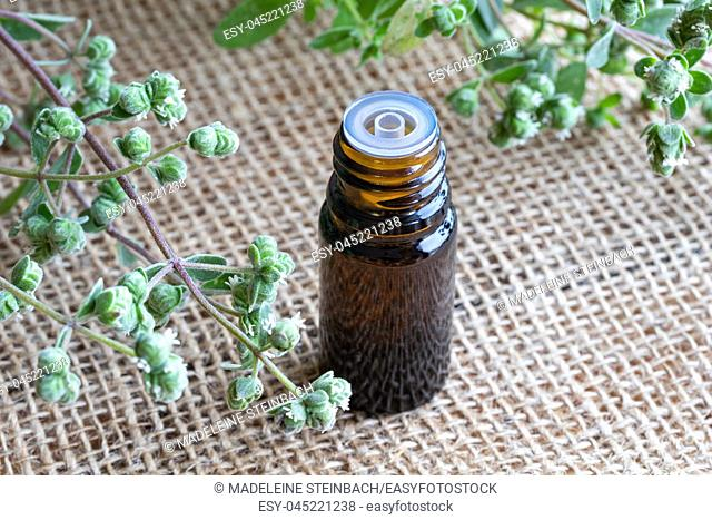 A bottle of essential oil with fresh blooming marjoram twigs in the background