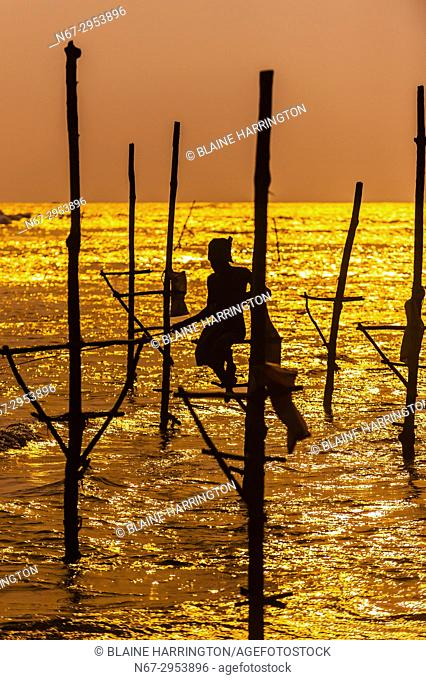 Stilt fishermen fishing at sunset, Ahangama, Southern Province, Sri Lanka