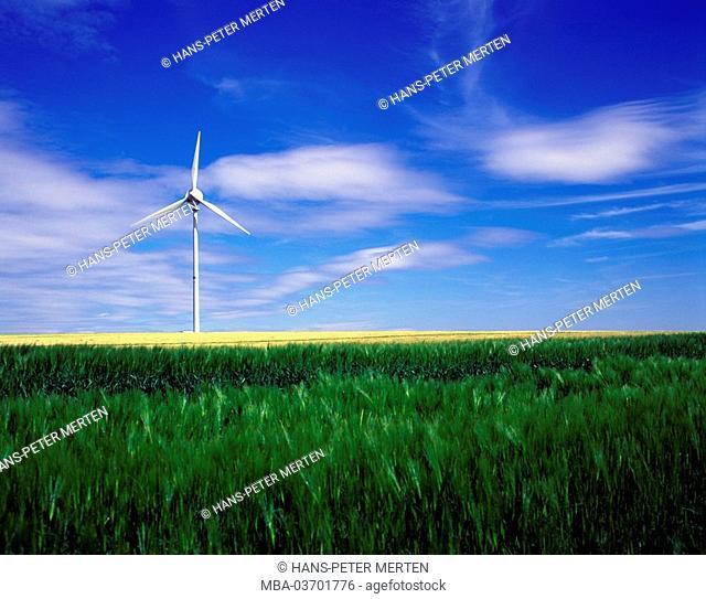 Germany, Rhineland-Palatinate, Hunsrueck, grain field, wind engine