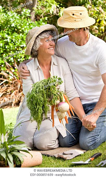 Lovely couple with vegetables in the garden