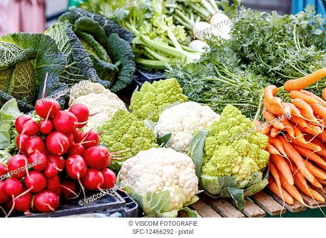 Vegetable varieties at a market