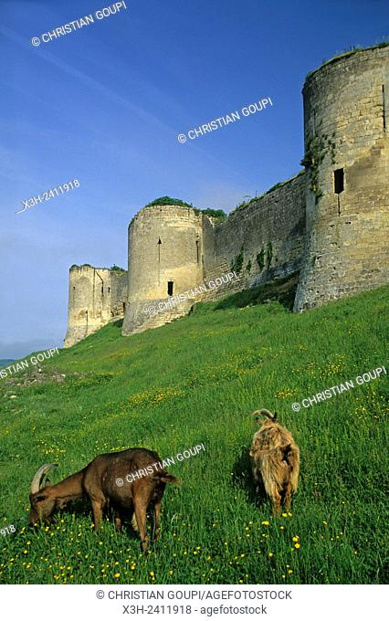 medieval fortified castle at Coucy-le-Chateau-Auffrique, Aisne department, Picardy region, northern France, Europe