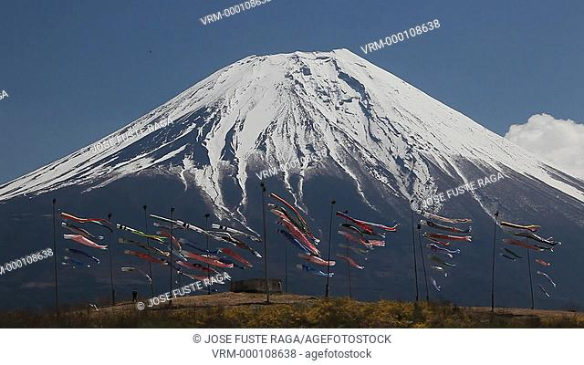 Japan, West Mount Fuji , Koinobori children's festival ,Flying koinobori