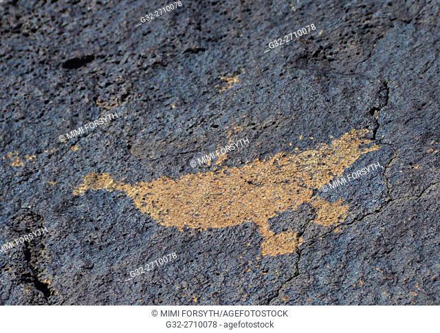 Petroglyph, bird, Boca Negra canyon, Albuquerque, New Mexico, USA