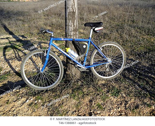 Bicycle leaning against a tree on a mountain bike path