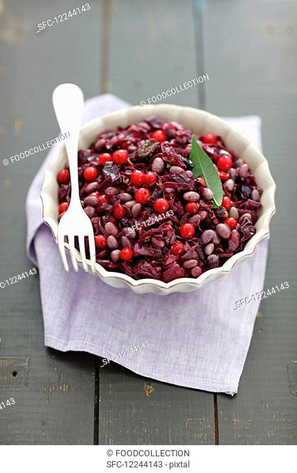 Purple cabbage braised with soya and cranberries (vegetarian)