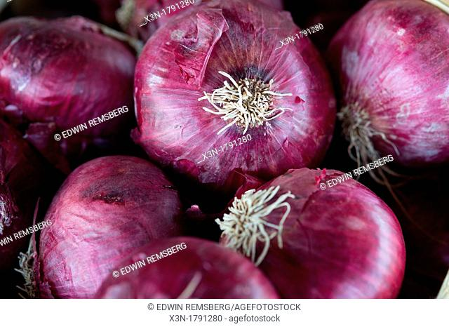 Eastern Shore Virginia red onions at a farmer's market