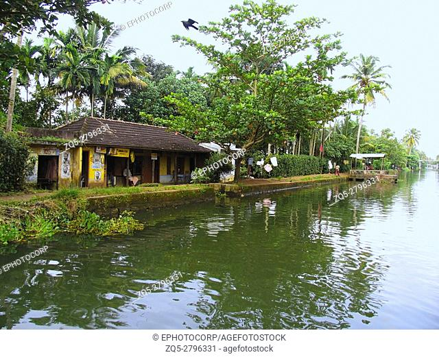 House and palm trees, Back waters of Kerala. India
