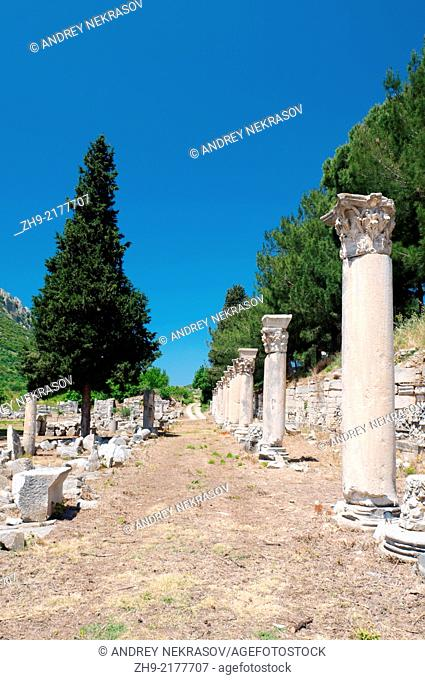 Roman road, antique city of Ephesus, Efes, Turkey, Western Asia