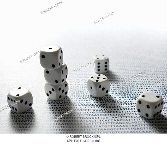 Dice and letters representing human DNA (sample from Homo sapiens chromosome 1)