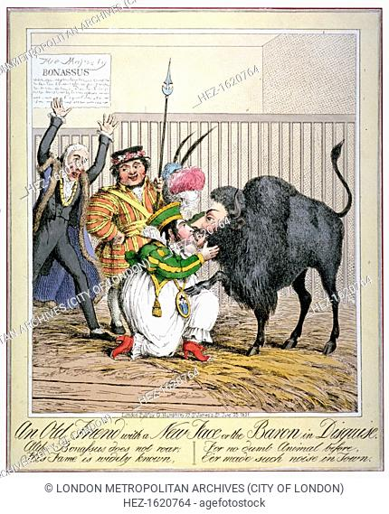'An old friend with a new face or the baron in disguise', 1821. A bison with the head of Bartolomeo Pergami is embraced by Queen Caroline