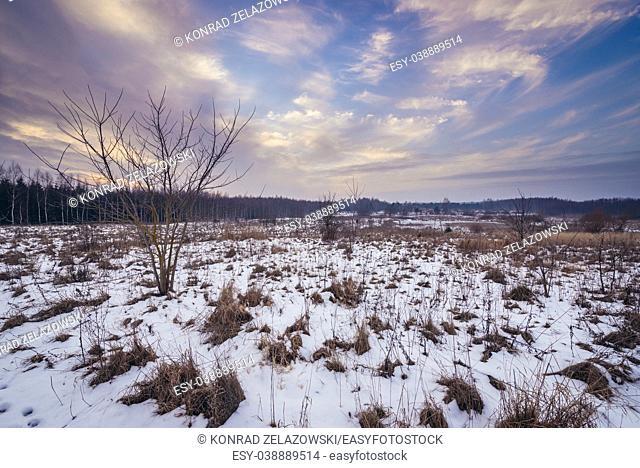Rural landscape in Kruszyniany village, former Polish Tatars settlement within Sokolka County, Podlaskie Voivodeship of Poland