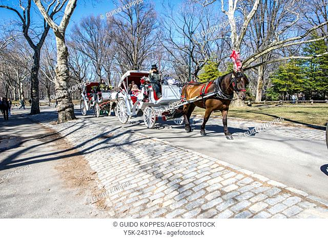 New York, USA. Carriage with horse, coachman and passenger, riding through South Central Park, Manhattan