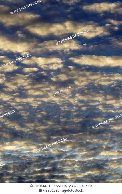 Altocumulus clouds in the evening, Andalusia, Spain