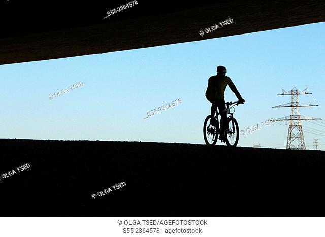 Back view of a biker cycling under the bridge. Anella verda del Prat de Llobregat, Barcelona province, Catalonia, Spain