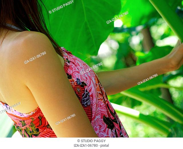 Mid section view of a woman holding an alocasia odora stem