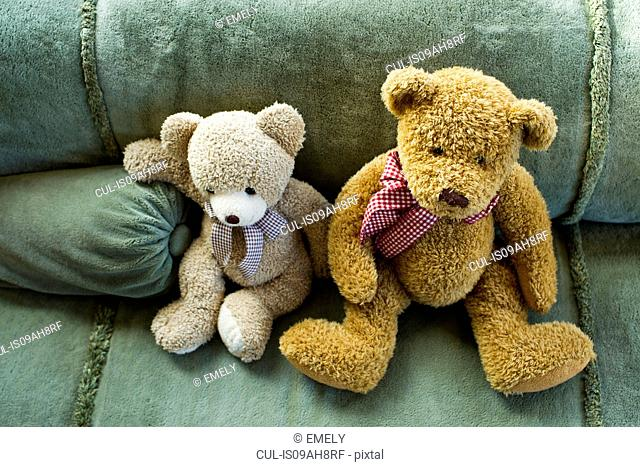 Two teddy bears sitting on sofa