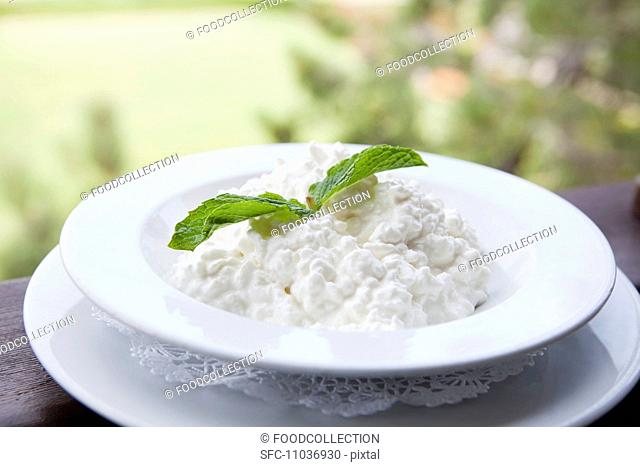 Bowl of Cottage Cheese with a Mint Garnish, Outdoors