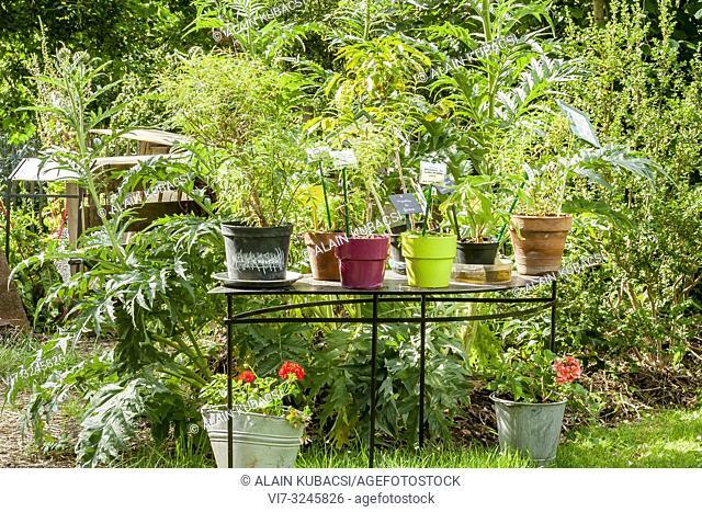Vegetable Garden, Insolite Garden, Parc Floral Vincennes, Paris, France