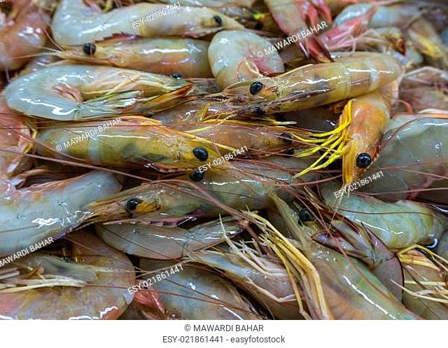 Shrimps. The fish market
