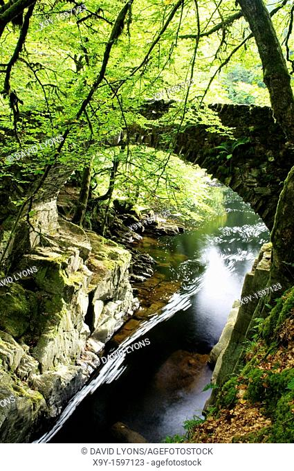 The River Braan flows through woodland under an old stone bridge south east of Aberfeldy in the Tayside Region of Scotland, UK
