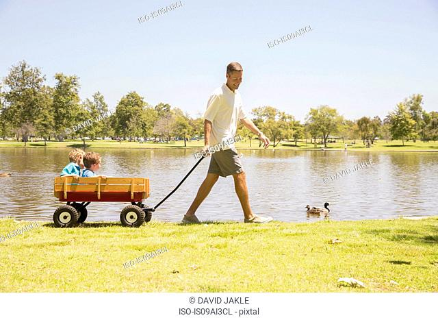 Father pulling wagon with sons inside at lakeside, Newport Beach, California, USA
