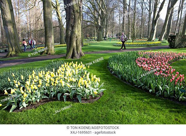 'de keukenhof' is a dutch flower exhibition in springtime attracting many tourists